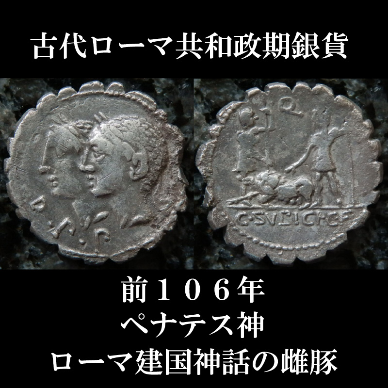 古代ローマコイン 共和政期 前106年 スルピキウス・ガルバ デナリウス銀貨 ペナテス(家庭・国家の守護神)の肖像 ローマ建国神話の雌ブタ