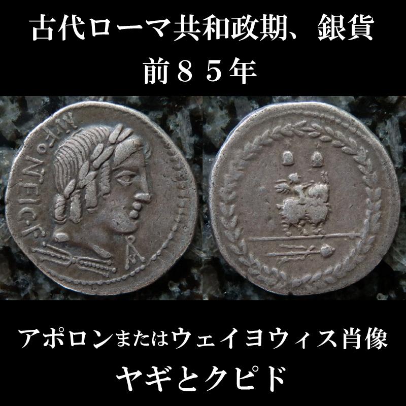 ローマコイン 共和政期 マニウス・フォンテイウス 前85年 デナリウス銀貨 アポロンまたはウェイヨウィス肖像 ヤギとクピド