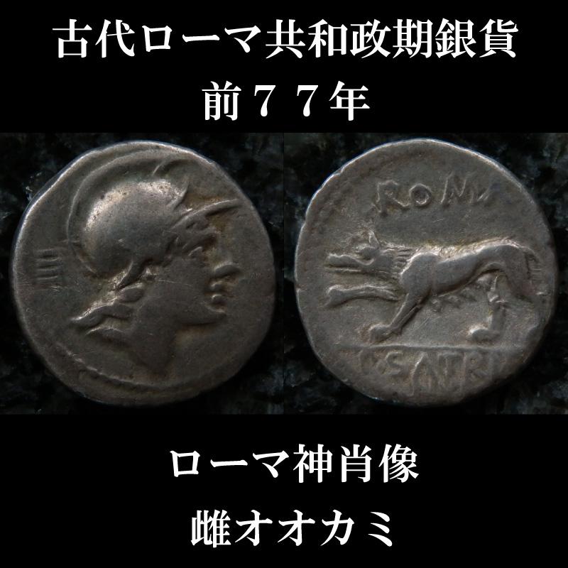 ローマコイン  共和政期 前77年 プブリウス・サトリエヌス デナリウス銀貨 ローマ神肖像 4つの乳房の雌オオカミ 西洋古代美術