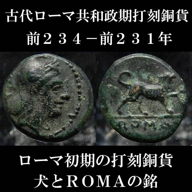 ローマコイン 共和政期 前234-前231年 銅貨 ローマ神肖像 犬とROMAの銘 ローマ人初期の打刻銅貨 西洋古代美術