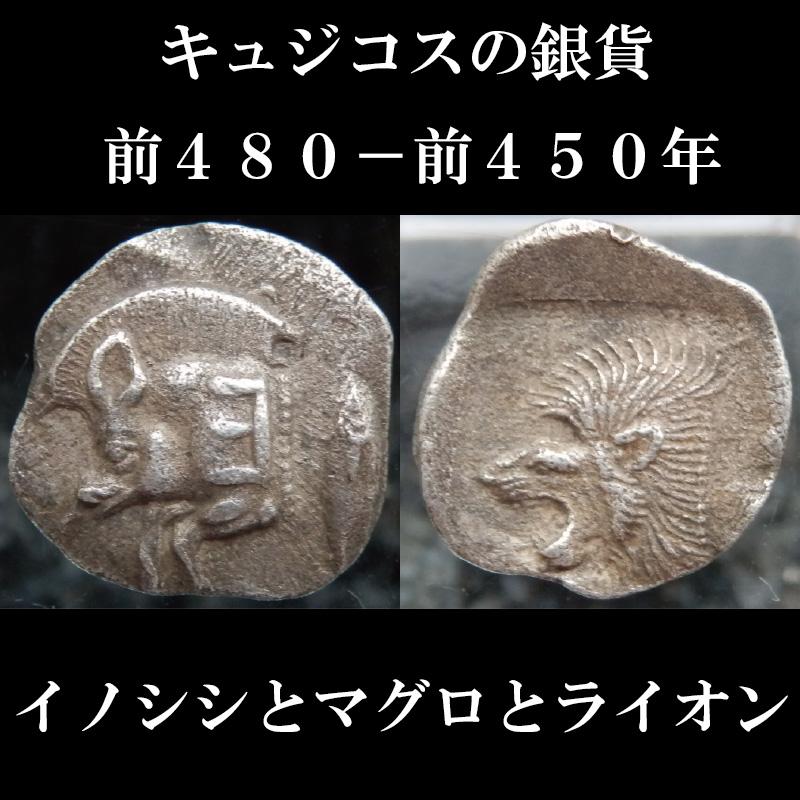古代ギリシャコイン ミュシア地方 キュジコス 前480-前450年 オボル銀貨 イノシシとマグロとライオン 西洋古代美術