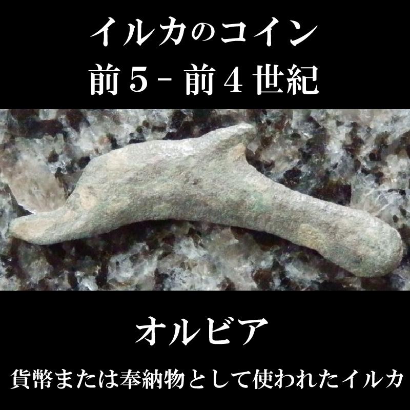 画像1: 古代ギリシャコイン オルビア イルカのコイン 前5-前4世紀 (1)