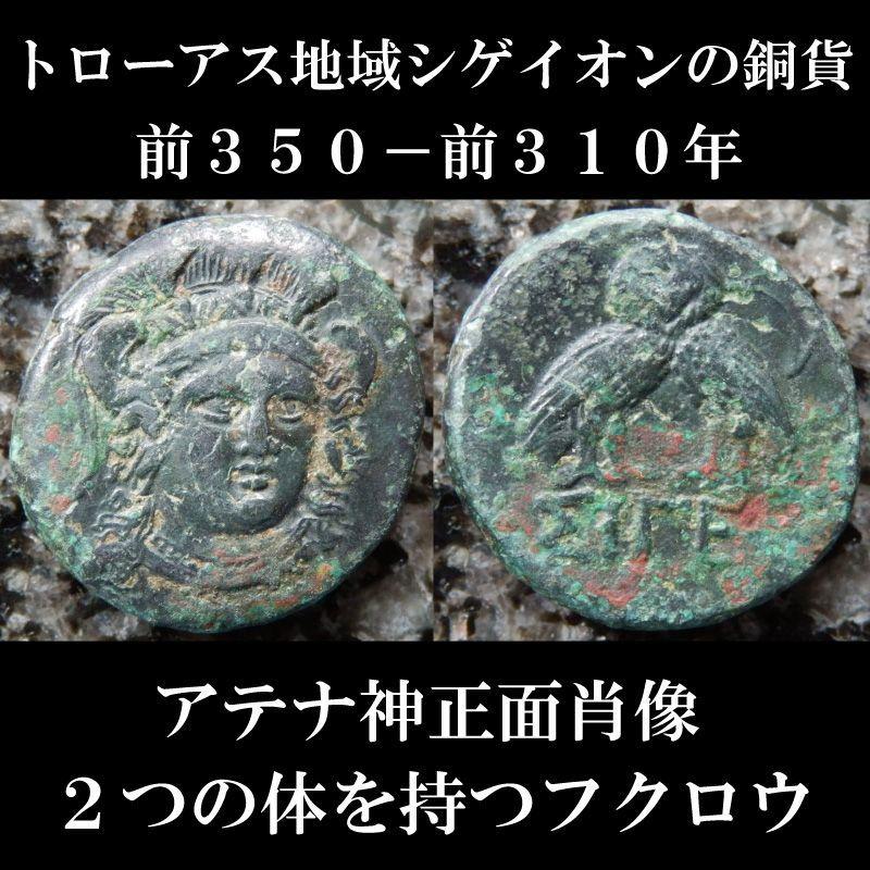 古代ギリシャコイン トローアス地域 シゲイオン 銅貨 前350-前310年 アテナ神の正面肖像 2つの体を持つフクロウ