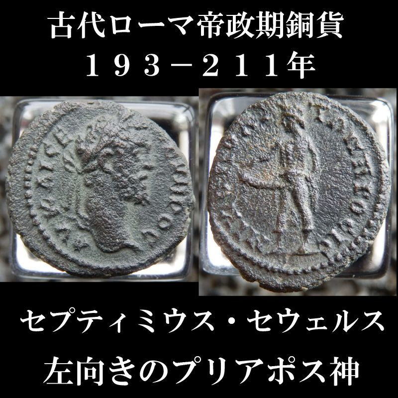 ローマコイン セプティミウス・セウェルス アッサリオン銅貨 193-211年 セプティミウス・セウェルス肖像 左向きのプリアポス神
