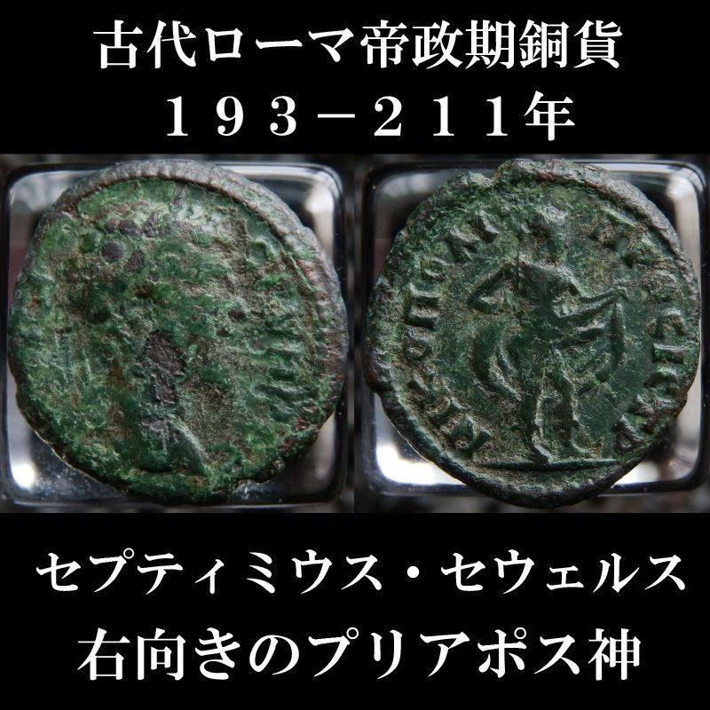 ローマコイン セプティミウス・セウェルス アッサリオン銅貨 193-211年 セプティミウス・セウェルス肖像 右向きのプリアポス神