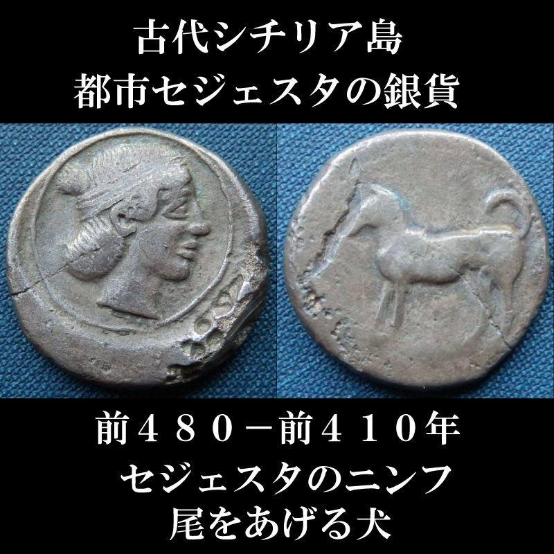 古代ギリシャコイン シチリア島・セジェスタ 前480-前410年 2ドラクマ銀貨 セジェスタのニンフ 尾をあげた犬
